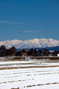 立山連峰と田園風景の写真素材 [FYI01583860]