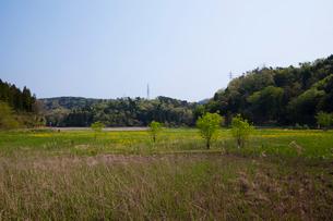 中池見湿地の写真素材 [FYI01584028]
