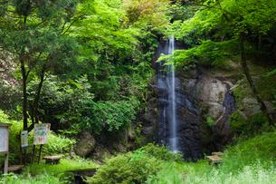 蹄の滝の写真素材 [FYI01584249]