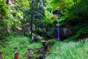 蹄の滝の写真素材 [FYI01584270]