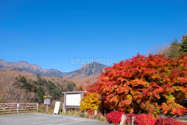 紅葉と八ヶ岳の写真素材 [FYI01584300]