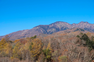 紅葉と八ヶ岳の写真素材 [FYI01584455]