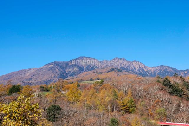 紅葉と八ヶ岳の写真素材 [FYI01584473]
