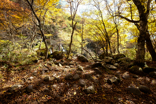 吐竜の滝と登山道の写真素材 [FYI01584550]