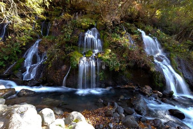 吐竜の滝の写真素材 [FYI01584588]
