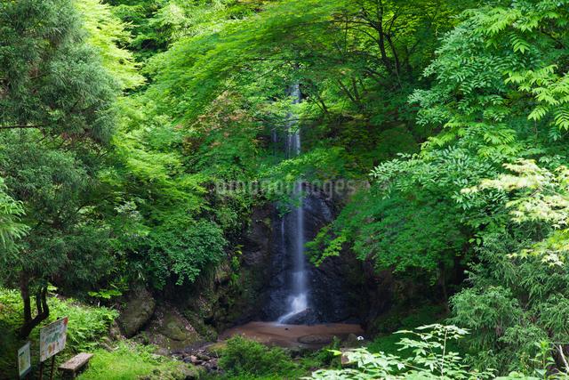 蹄の滝の写真素材 [FYI01584628]