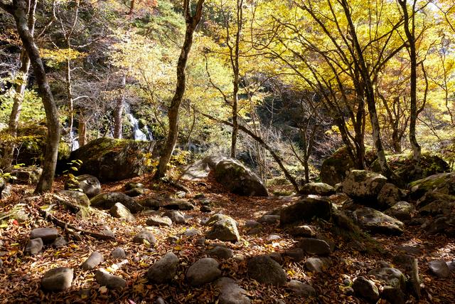 吐竜の滝と登山道の写真素材 [FYI01584679]