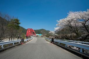 飛騨川と桜の写真素材 [FYI01584688]