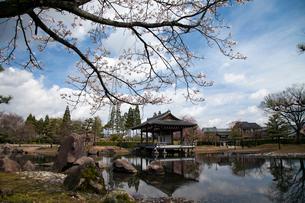 紫式部公園の写真素材 [FYI01584700]