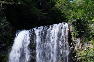 善五郎の滝の写真素材 [FYI01584703]