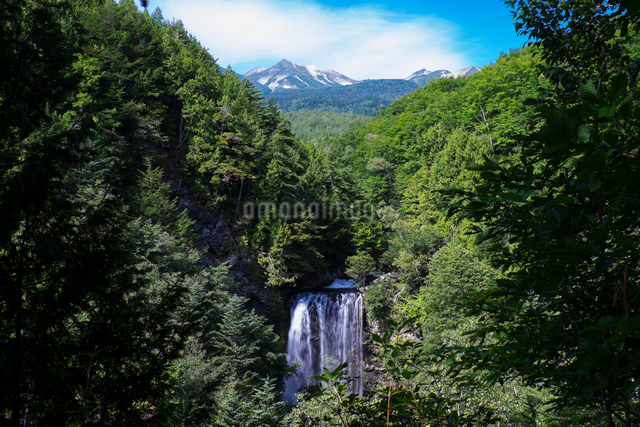 善五郎の滝の写真素材 [FYI01584709]