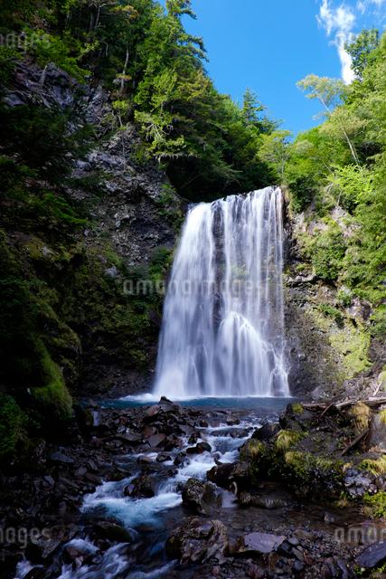 善五郎の滝の写真素材 [FYI01584843]