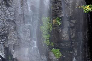 駒ケ滝の写真素材 [FYI01584856]
