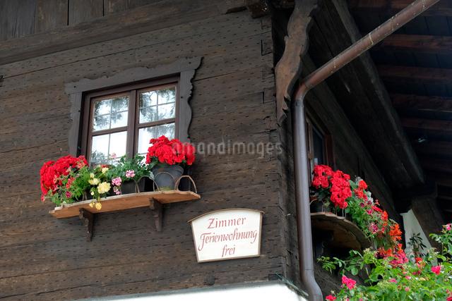 花のある窓の写真素材 [FYI01585108]