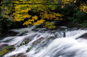 竹田川渓谷の写真素材 [FYI01585178]
