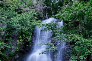 駒ケ滝の写真素材 [FYI01585347]