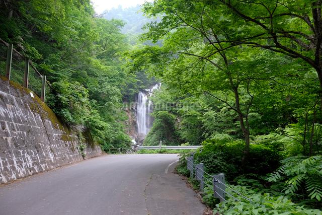 天生中滝の写真素材 [FYI01585414]