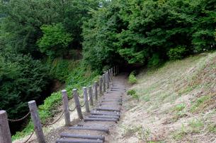 西山公園遊歩道の写真素材 [FYI01585418]