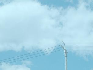 青空と電柱の写真素材 [FYI01585441]
