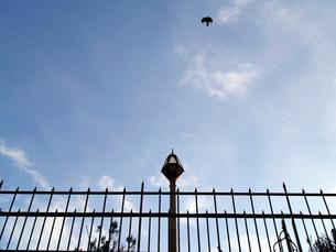 フェンスと街灯と青空の写真素材 [FYI01585501]