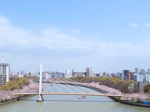 川崎橋と桜並木の写真素材 [FYI01585524]