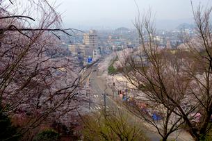 鯖江市の街並みの写真素材 [FYI01585555]