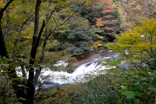 竹田川渓谷の写真素材 [FYI01585603]