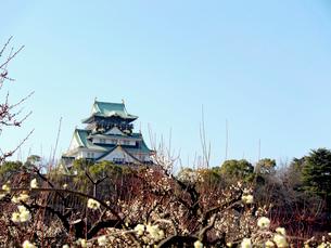 梅の花と大阪城の写真素材 [FYI01585614]