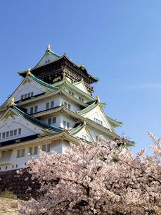 大阪城と桜の写真素材 [FYI01585626]