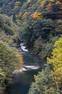 竹田川渓谷の写真素材 [FYI01585744]