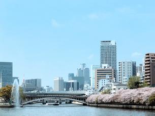 ビル群と川辺の桜の写真素材 [FYI01585776]