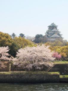 大阪城と桜の写真素材 [FYI01585968]
