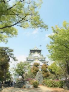 大阪城の写真素材 [FYI01585981]