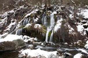 冬の吐竜の滝の写真素材 [FYI01586072]