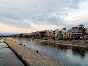 鴨川の夕方の写真素材 [FYI01586119]