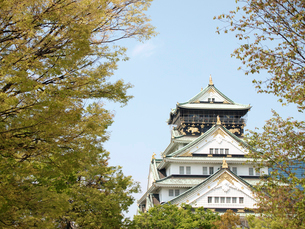 大阪城の写真素材 [FYI01586215]