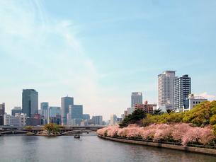 ビルと桜と遊覧船の写真素材 [FYI01586330]