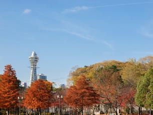 通天閣と色づく木々の写真素材 [FYI01586467]
