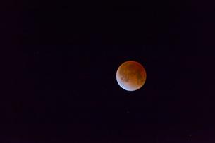 皆既月食の写真素材 [FYI01586493]