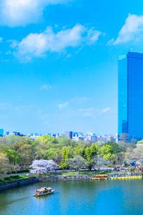 桜と青空と高層ビルの写真素材 [FYI01586635]