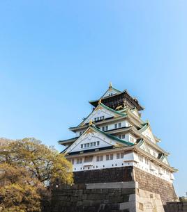 大阪城と桜の写真素材 [FYI01586671]
