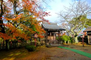 妙法寺の写真素材 [FYI01586736]