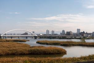 淀川の干潟と長柄橋の写真素材 [FYI01586783]
