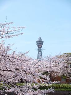 桜と通天閣の写真素材 [FYI01586917]