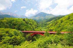 新緑の八ヶ岳連峰と東沢大橋の写真素材 [FYI01587341]