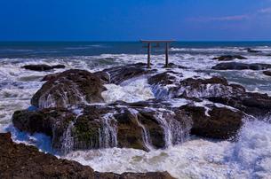 大洗磯前神社の神磯の鳥居と太平洋の写真素材 [FYI01587402]