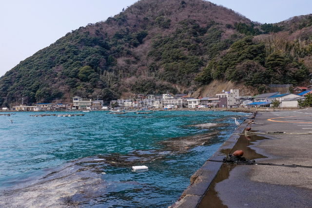 常神漁港の写真素材 [FYI01587685]