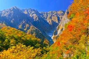 谷川岳 一ノ倉沢の紅葉の写真素材 [FYI01587760]