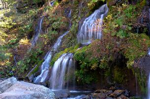 吐竜の滝の写真素材 [FYI01587768]