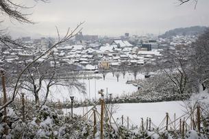 西山公園の雪吊りと冬景色の写真素材 [FYI01588129]
